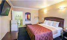 Carlton Motor Lodge - Standard Room